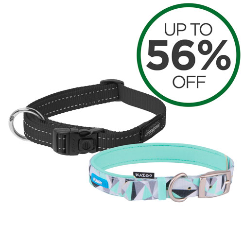 Shop All Collars