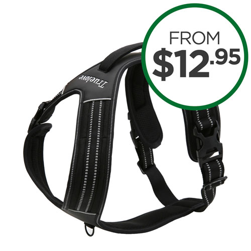 Shop All Harnesses