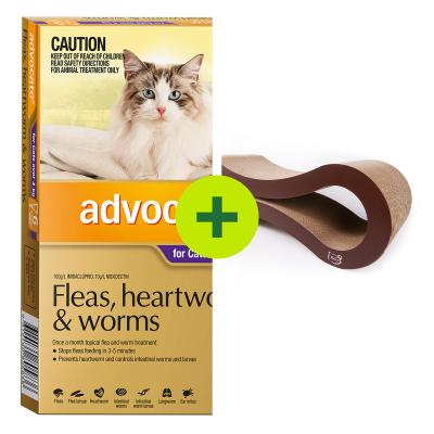Advocate Plus Minx Infinity Scratcher Lounging Bed For Cats And Kittens