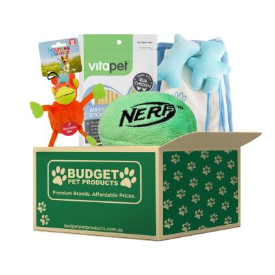 Welcome To The Family Puppy Cuddly Gift Box