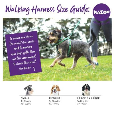 Kazoo Active Nylon Reflective Walking Harness Purple Lime Large XLarge 77-99cm x 25mm For Dogs