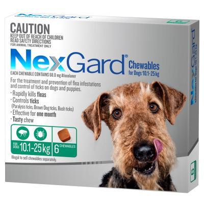 NexGard For Dogs Green Medium 10.1-25kg 6 Pack