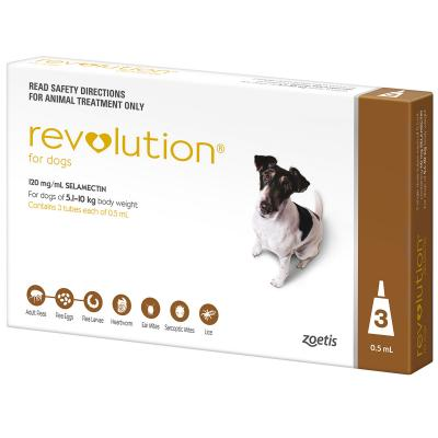 Revolution For Dogs 5.1-10kg Brown 3 Pack