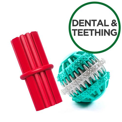 Dental & Teething