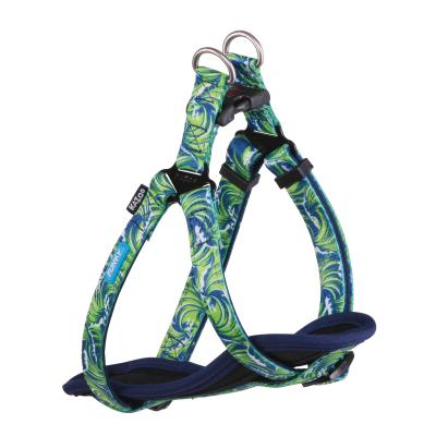 Kazoo Funky Nylon Walking Harness Waves Small 38-53cm x 15mm For Dogs