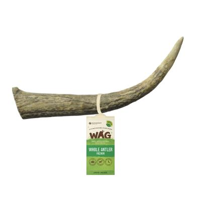 WAG Whole Deer Antler Natural Dried Medium Treat For Dogs