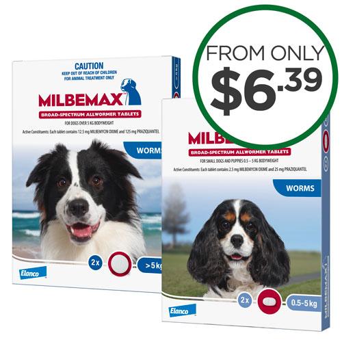 Milbemax Dog