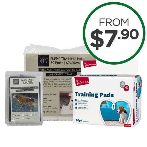 Toilet Training Pads