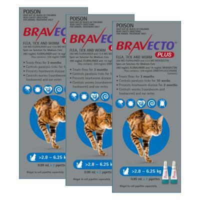 Bravecto Plus Spot On For Medium Cats 2.8 - 6.25kg 6 Pack