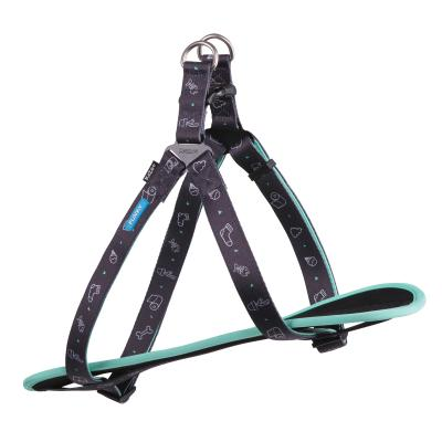 Kazoo Funky Nylon Walking Harness Doodles Small 38-53cm x 15mm For Dogs