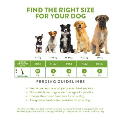 Whimzees Dental Toothbrush Small Treats For Dogs 7 -12kg 4 Pack 60gm