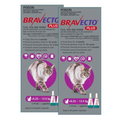 Bravecto Plus Spot On For Large Cats 6.25 - 12.5kg 4 Pack