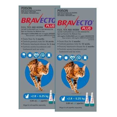 Bravecto Plus Spot On For Medium Cats 2.8 - 6.25kg 4 Pack