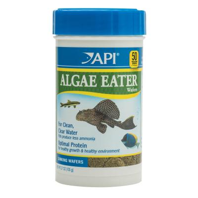 API Algae Eater Wafers Food For Fish 105gm