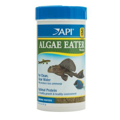 API Algae Eater Wafers Food For Fish 181gm