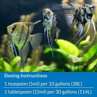 API Stress Coat For Fish Aquarium 473ml