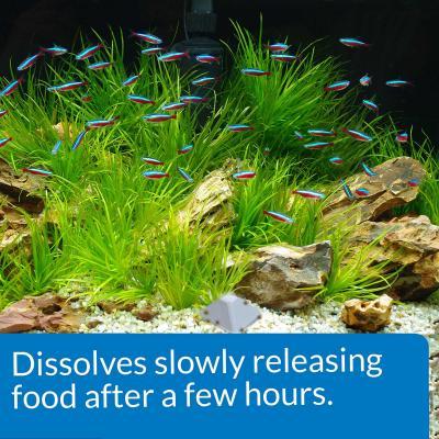 API Vacation Pyramid Fish Feeder Up to 14 Days For Fish Aquarium