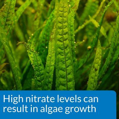 API Nitrate Test Kit For Fish Aquarium