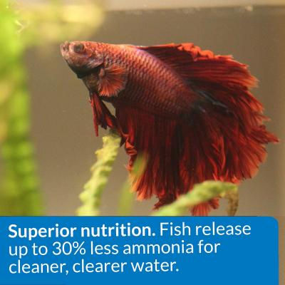 API Betta Floating Pellets Food For Fish 22gm
