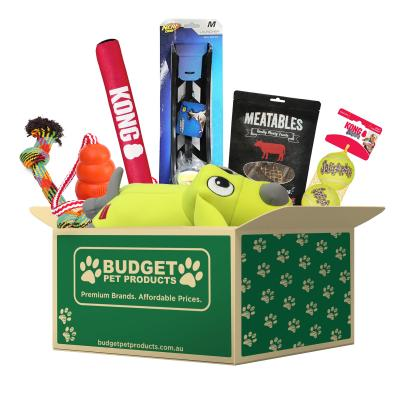 The Big Box Of Active Outdoor Fun With KONG Toys For Medium Large Dogs