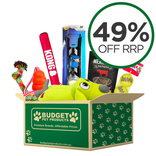 Active Outdoor Fun Box