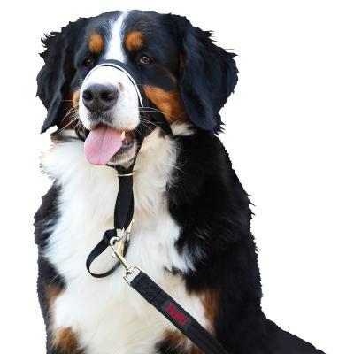 Company Of Animals Halti Headcollar Black Size 4 For Dogs